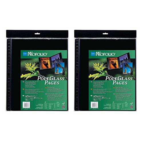 Itoya A2 Size Art Profolio Polyglass Pages (16.5'' x 23.4'') 2 Pack by Itoya of America, Ltd