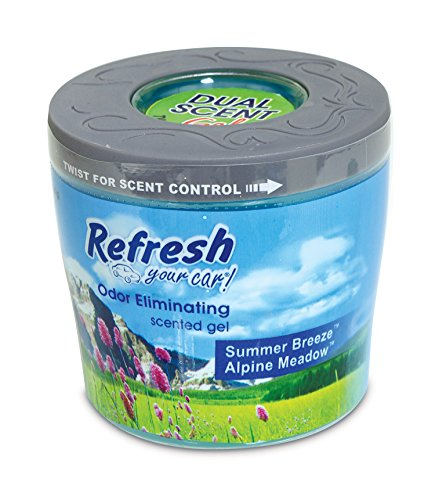 Refresh Your Car! E300867200 Scented Gel Can, 5 oz, Alpine Meadow and Summer Breeze ()