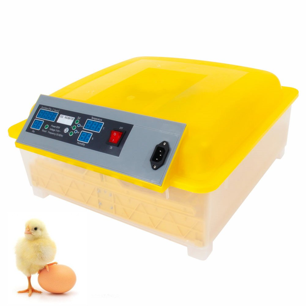 Z ZTDM 48-Egg Digital Clear Egg Incubator Hatcher Automatic Egg Turning Temperature Control Hatching Machine for Chickens, Ducks, Quails, Pigeons with US Plug