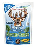 Whitetail Institute Imperial Winter-Greens Food Plot Seed (Fall Planting), 12-Pound (2 Acres)