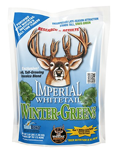 (Whitetail Institute Imperial Winter-Greens Food Plot Seed (Fall Planting), 12-Pound (2)