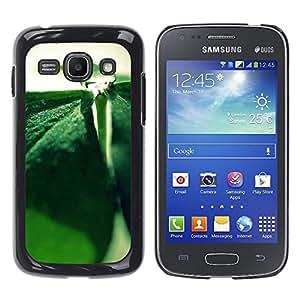 """For Samsung Galaxy Ace 3 , S-type Planta Naturaleza Forrest Flor 85"""" - Arte & diseño plástico duro Fundas Cover Cubre Hard Case Cover"""