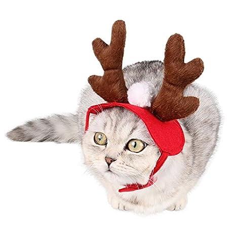 Gatos de perro Mascotas sombrero ciervos estilo Festival tapas gorro disfraces tamaño libre para cachorros y perros grandes: Amazon.es: Productos para ...