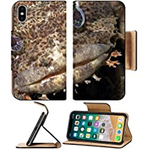 Luxlady Premium Apple iPhone X Flip Pu Leather Wallet Case IMAGE ID: 20154383 Close up of a muppet like Oyster Toadfish