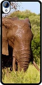 Funda para Htc Desire 820 - áfrica Elefante Exótico by WonderfulDreamPicture