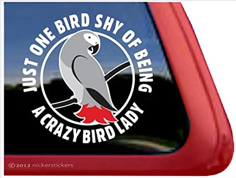 Amazoncom Crazy Bird Lady African Grey Parrot Bird Vinyl Window - Bird window stickers amazon