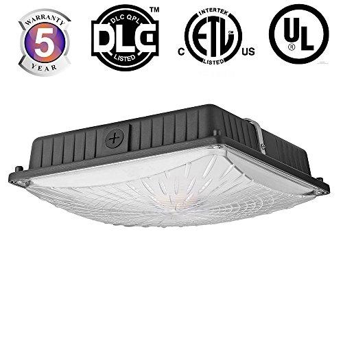 Docheer LED Slim Canopy Light Outdoor Ceiling Lights