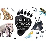 Match a Pair of Birds: A Memory Game: Amazon.es: Christine