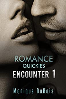 Romance Quickies Encounter Monique DuBois ebook product image