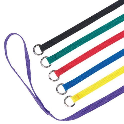 60 Pack (4' x 1/2'') Dog Pet Animal Control Grooming Kennel Shelter Veterinarian Doggy Daycare Slip Leads by ELECANE (Image #1)