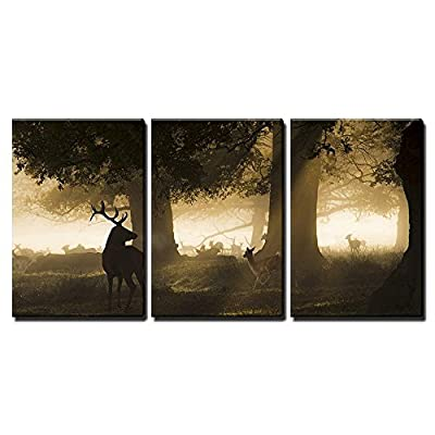 Red Deer In The Forest - Canvas Art