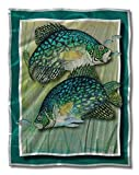 All My Walls Her00006 Metal Wall Art Decor Sculpture 35.5H x 27.5W Modern Fish 'Crappie Action' Steve Heriot