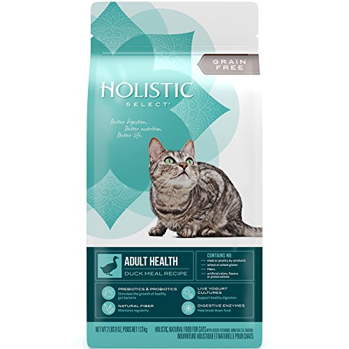 Holistic Select Natural Grain Free Dry Cat Food, Duck Meal Recipe, 2.5-Pound Bag