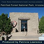 Petrified Forest National Park, Arizona: Audio Journeys | Patricia L. Lawrence
