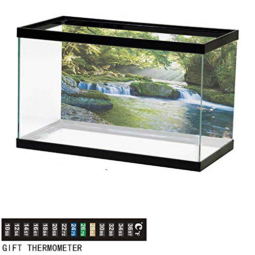 wwwhsl Aquarium Background,Rainforest,Foliage Jungle Misty Mountains Waterside River Shaft with Sunbeams Image,Green Yellow Blue Fish Tank Backdrop 48