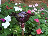 Magenta Hand Blown Glass Butterfly Feeder with 36'' Copper Stake