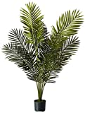 Nearly Natural 5259 Paradise Artificial Palm Trees , 5-Feet, Green