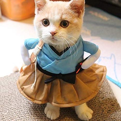 Amazon.com: Disfraz de gato para disfraz de gato, disfraz de ...