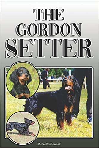 The Gordon Setter: A Complete and Comprehensive Owners Guide