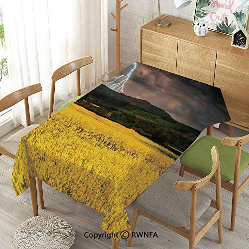 - Homenon Wipe Clean Tablecloth for Rectangle Tables,Thunderstorm Over The Meadow Valley with Scary Dark Sky Rural Farm Scenery,Waterproof Wrinkle Resistant,Yellow Green Purple,55
