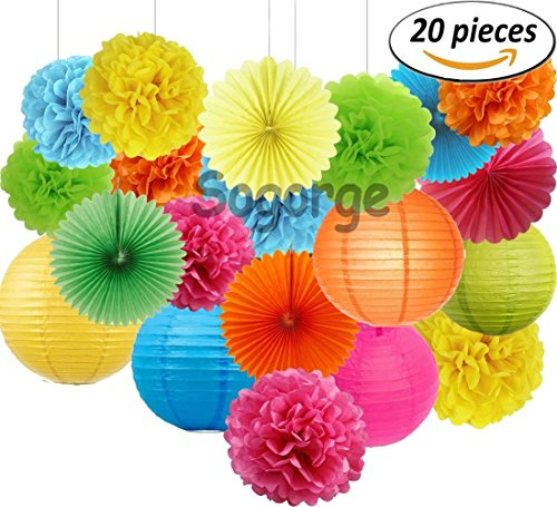 Set of 20 Assorted Rainbow Color Paper Pom Poms,Paper Folding Fans and Paper Lanterns, 5 Colors, for Party, Baby Shower and Wedding Decorations (Color Lanterns)