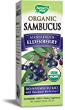 organic elderberries - Nature's Way Sambucus, Organic Standardized Elderberry Syrup, 4 Fl. Oz, 4 Fluid Ounce