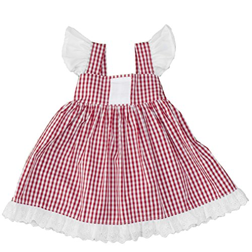 Girls Gingham A Line Dress with Eyelet Lace Trim & Angel Sleeves (2T, Red)