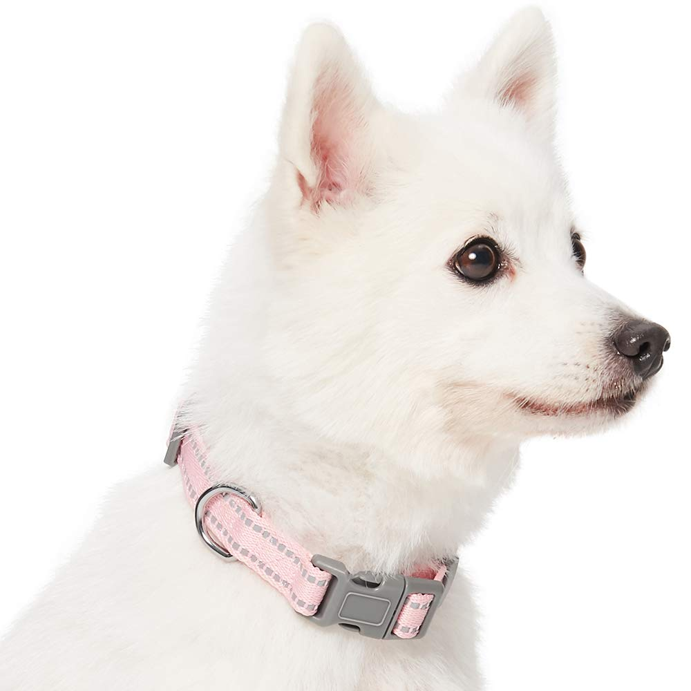 Essential Pastel Color Reflective Dog Collar in Baby Blue Umi Adjustable Collars for Dogs Neck 37cm-50cm Medium