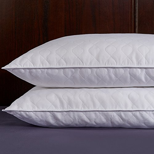 [Puredown Quilted White Goose Feather and Down Pillow, Set of 2, White, Standard/Queen Size] (Goose Down Feather Pillow Insert)