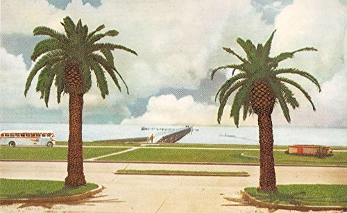- Biloxi Mississippi scenic view Continental Trailways bus vintage pc Y13060