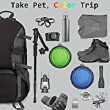 COMSUN 2-Pack Extra Large Size Collapsible Dog