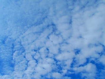 Amazon.com: blue sky - Art Print on Canvas (40x60 cm ...