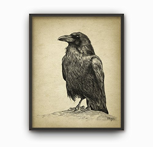 HYD Art Vintage Raven Canvas Poster for Bedroom Decor 8 x 10 Inches,No Frame -