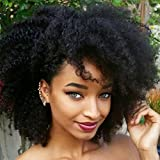 Luwigs Afro Kinky Curly 4B 4C Clip in Hair Extensions for Black Women Real Brazilian Virgin Human Hair Clip Ins Natural Color 7pcs/set (16 inches, Afro Kinky Curly)