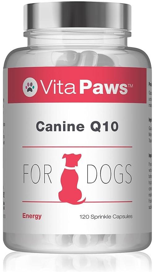 VitaPawsTM Q10 Canino| 120 Perlas | para favorecer la salud del corazón de nuestro perro | Indicado para perros: Amazon.es: Salud y cuidado personal