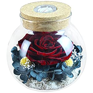 Preserved Real Roses with Colorful Mood Light Wishing Bottle,Eternal Rose,Never Withered Flowers,for Bedroom Party Table Decor, Christmas Decorations,a Gifts for Women (Burgundy)