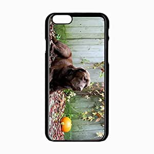 iPhone 6 Black Hardshell Case 4.7inch dog rest leaves autumn Desin Images Protector Back Cover by mcsharks