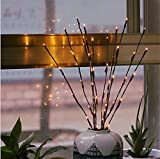GZQ Decorative Lights Valentine Romance Atmosphere Night Lights 20 LED Branches Twig Fairy Lights for Home Wedding Christmas Birthday Party Holiday Gift Decoration Kids' Room Warm White