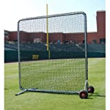 Trigon Sports Procage Pro Screen (Includes BFPRO96 and10-Feet Net Kit), 10 x 10-Feet