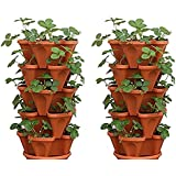 Mr. Stacky 5-Tier Strawberry Planter Pot, 5 Pots (2-Pack)