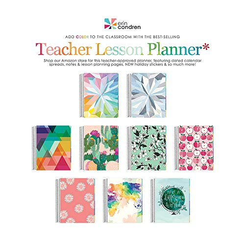 Erin Condren 12-Month 2019-2020 Teacher Lesson Planner 8.5x11 (August 2019-July 2020) - Kaleidoscope Colorful
