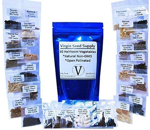 10,000 Seed Lot - 30 Vegetable & Fruit Variety Pack - Survival Non-gmo Varieties