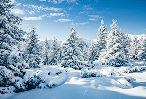 CSFOTO 7x5ft Background for Winter Forest Landscape Snow Scene Photography Backdrop White World Snow Cold Frost Sunny Wonderland New Year Christmas Holiday Photo Studio Props Polyester Wallpaper ()