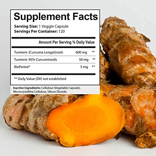 Curcumin & Turmeric Supplements | All You Need To Know | Ageless Pills