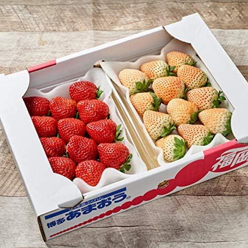 南国フルーツ 福岡・佐賀産紅白いちご2パック