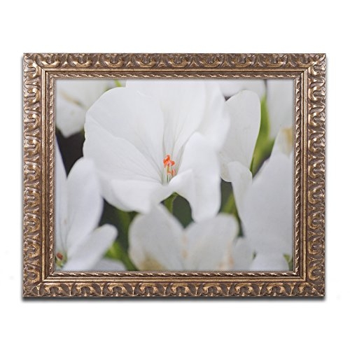 Clustered Jewel by Monica Mize Ornate Frame, 16