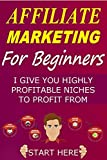 AFFILIATE MARKETING: 17 UNDERGROUND UNDERUTILISED HIGHLY PROFITABLE NICHES TO PROFIT FROM