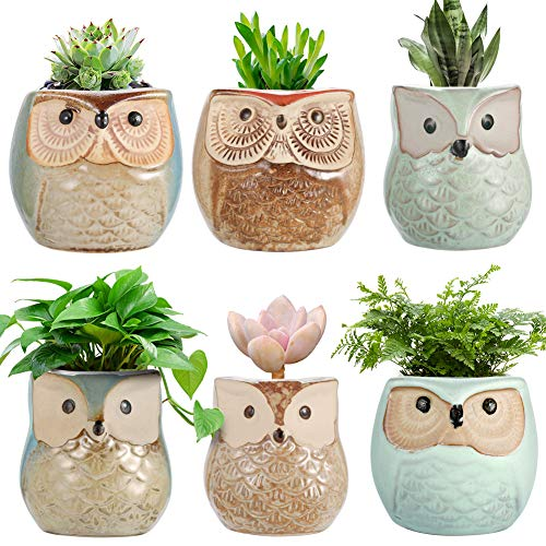 Endless Pot 6 - Owl Planter Pots,Ceramic Succulent Flower Pots Mini Container Bonsai Planters Pots with Hole Flower Plant Pots Garden Planters Pots,Home and Office Decoration Desktop Windowsill Gift-Set of 6