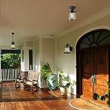Globe Electric Charlie 1-Light Outdoor/Indoor