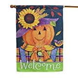 LAYOER Home Garden Flag 28 x 40 Inch Decorative House Double Sided Banner (Pumpkin Sunflowers Welcome)
